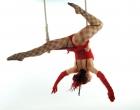 Felicity Fyr Le Fay on Trapeze by Stu Freeman